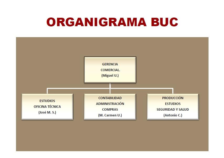 Buc eballo empresa for Organigrama de una empresa constructora